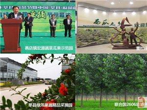 莘县新增3处国家AA级旅游区