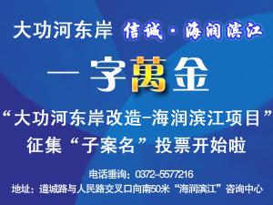 """信诚集团大功河东岸工程""""海润滨江""""项目子案名D地块投票"""