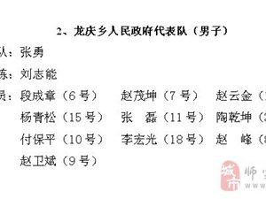 【公告】篮球赛各乡镇代表队名单