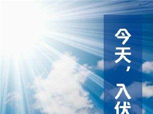 """【三伏天】今日入伏,迎接盛夏""""烤""""验"""