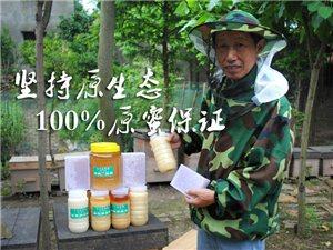 白氏养蜂场- 华容人自己的蜂蜜! 县城免费送货上门!