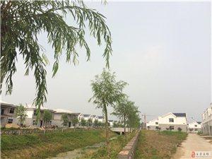 《田园杂兴》之蔡都社区