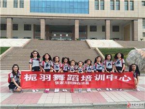 张家川桅羽舞蹈培训中心学员参加第六届《情感中国》文化艺术盛典受好评