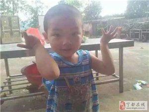 宁都青塘中学小男走失,望传播扩散!家长急!