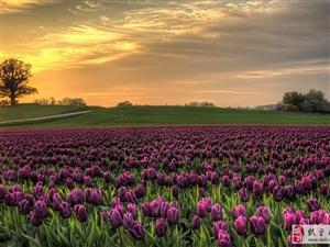 世界很大很美 看图更要去看看世界