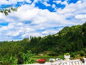 """中国""""利川红""""第一村-毛坝镇兰田村观云海、看日出、看日落、品红茶――"""