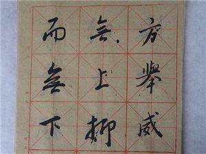 丹江口市书法家协会徐帮国先生《圣教序》书法练习欣赏