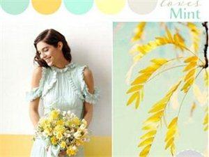 七种经典婚礼配色方案