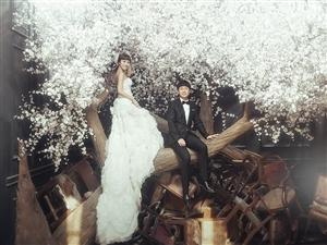 韩国的婚纱都是这么照的,
