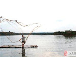醴泉湖的�~��泡�x