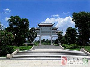 广东最美森林在哪?美丽森林摄影比赛启动