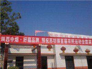 苏坊镇成功举办武功县首届农民运动会
