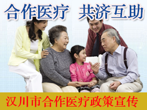 汉川市合作医疗政策宣传专题
