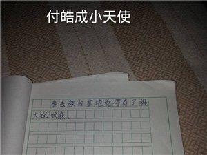 济宁公益小天使羊山红色教育作文展1
