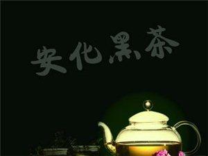 安化黑茶年度十件大事,都是哪些?