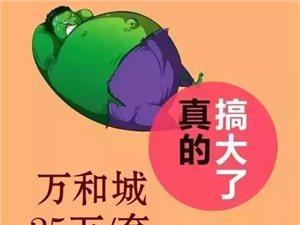 天元万和城庆购物广场开业感恩特价房35万/套
