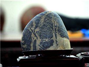 自�中���t石收藏第一人―-5