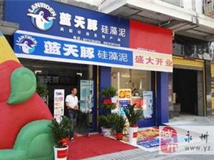热烈祝贺蓝天豚硅藻泥分店开业