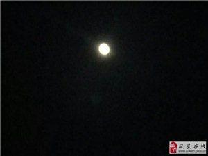 【祝君亲笔】-夜深人静,云淡风轻