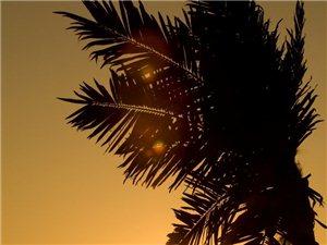 【爱神婚纱摄影】夕阳无限好,爱神邀你来看看!
