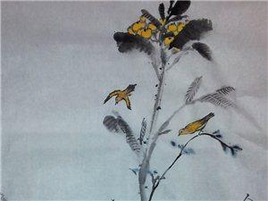 枇杷小鸟图