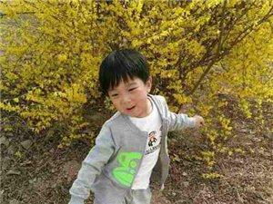 武汉板车哥来清河为白血病患儿崔仁杰募捐