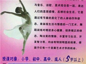 【爱舞既舞】张家川栀羽舞蹈培训中心火热招生中