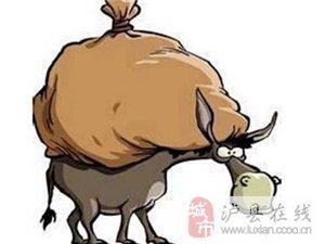 《 驴是怎样死的 》