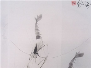 赵林池嫡传弟子史庆尧虾画艺术欣赏