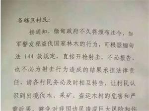 """紧急通告:缅甸军警发现盗伐林木者将可""""开枪射击""""(图)"""