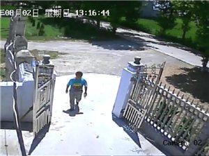 请帮忙辨认这个偷车贼