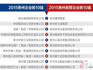 """""""2015贵州企业双百强""""发榜"""