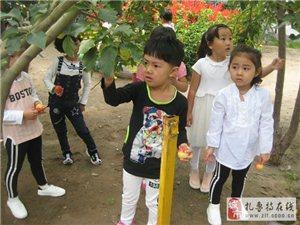 """8月31�,小�_丫幼��@�_展""""采摘��庸���感受��右饬x""""水果采摘活��"""