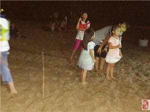 8月29-30号免费自驾南澳沙滩烧烤狂欢露营2天游集体回顾!