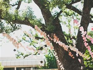2015年最有趣最容易DIY的婚礼装饰布置