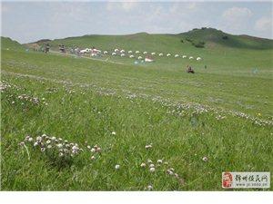 乌兰布统草原两日游