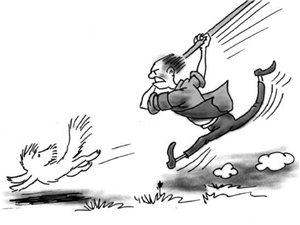【全民调查】会东流浪狗:打还是不打?怎么打?是该表达态度的时候了!