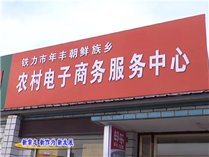 年丰电子商务服务中心成立