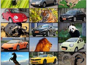 重口味的慎进,趣谈汽车与动物之间的不解缘