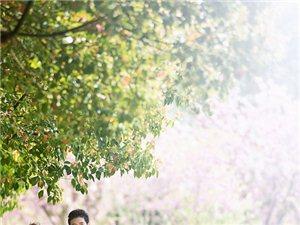 �o州�z影:秋天拍婚�照好么?如何拍好秋季婚�照