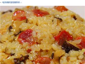 只使用电饭锅,有没有 30 天晚饭都不重复的菜谱推荐?