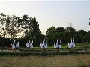 广汉酷睿流行舞
