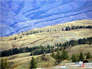 西北边疆第一村:白哈巴