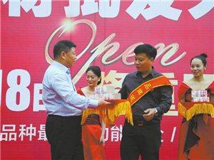 泸州西南商贸城2期生态建材批发大市场开业