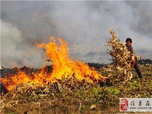 【辩论】农民焚烧秸秆造成咱们澳门太阳城现金网雾霾的吗?