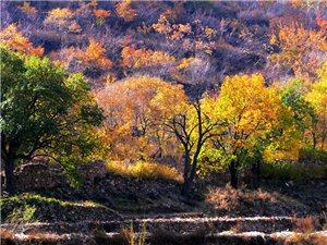 曾经的村落――哈巴气南山之晚秋