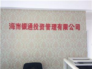 海南银通投资管理有限公司