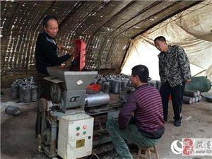 山西隰县:大棚食用菌种植圆了残疾人创业梦