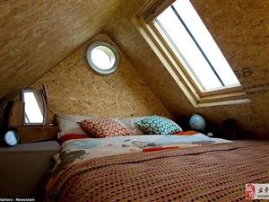 英国夫妇付不起房租自建小木屋 仅花费1000英镑