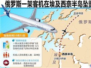 俄罗斯客机在埃及坠毁